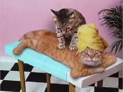 petitmassage.jpg
